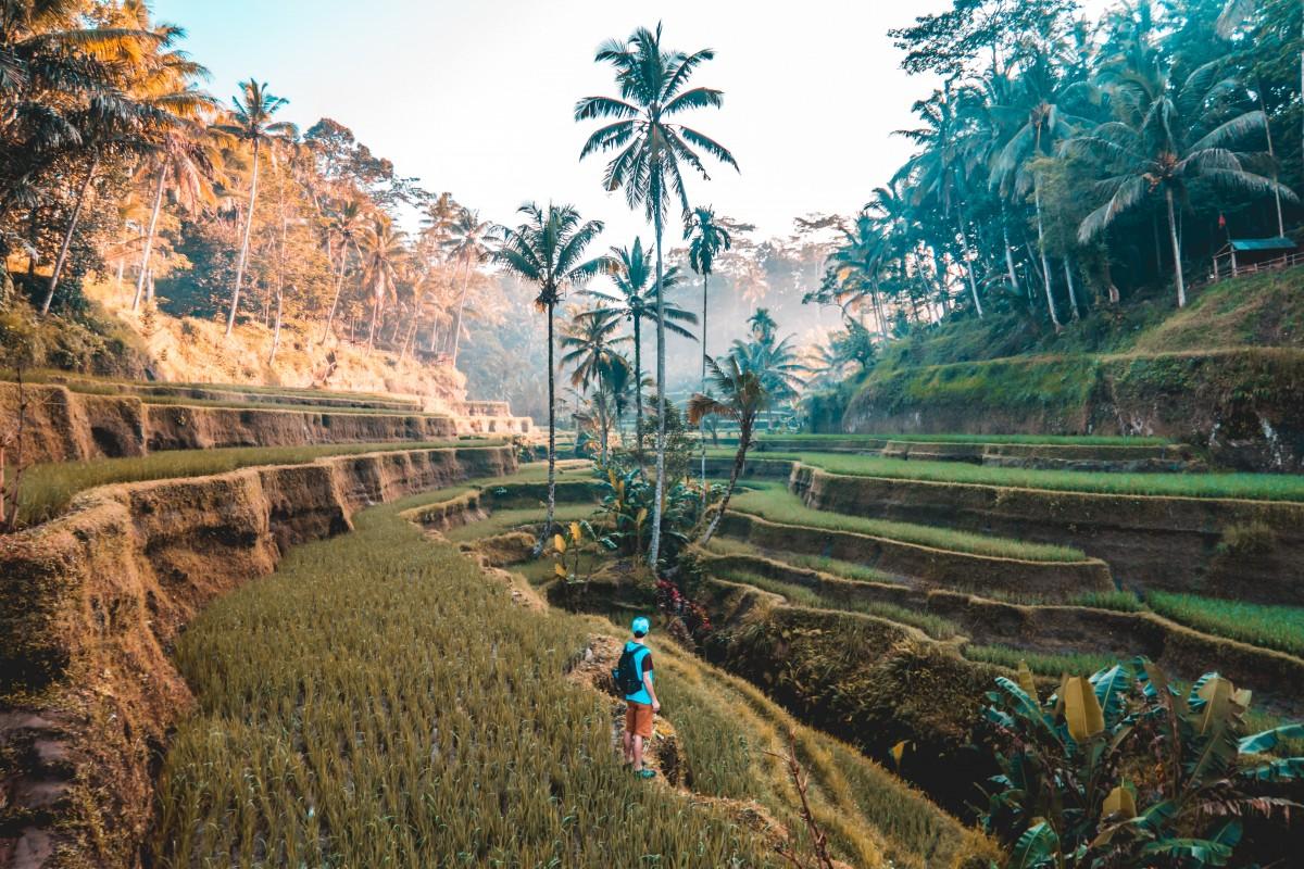 Op vakantie naar Indonesië | Een droom komt uit