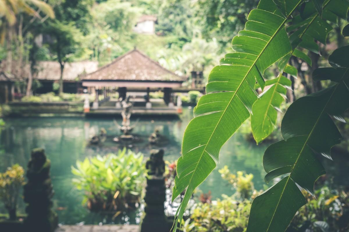 vakantie naar indonesië omboeken