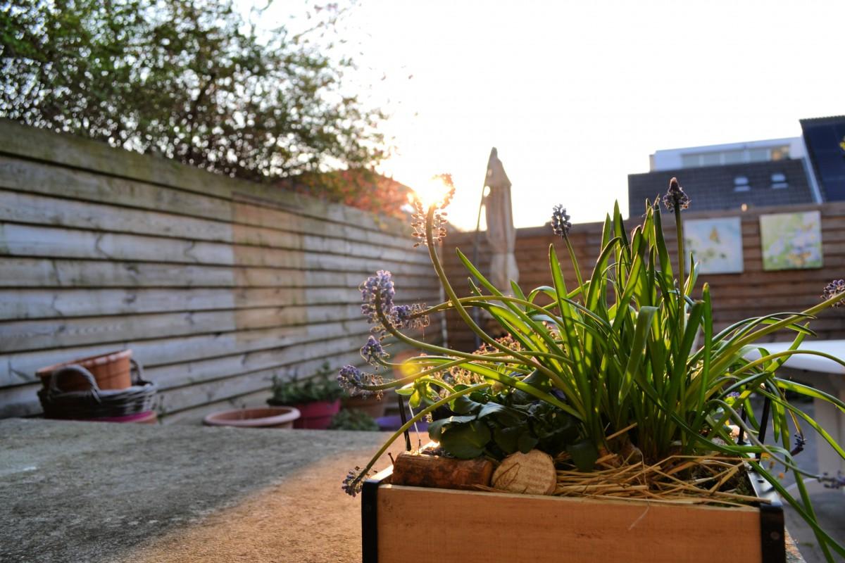 Over Pasen, de zomerse temperaturen en toe zijn aan vakantie